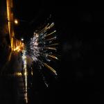 DSC_0800_ridimensionare