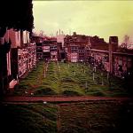 cimitero 80_5