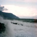 bagnara 1 gennaio 1980_06
