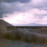 bagnara 1 gennaio 1980_07