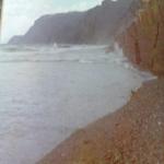 bagnara 1 gennaio 1980_48