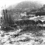 bagnara 1 gennaio 1980