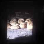 bagnara forno iericitano anni 70_24