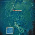 bagnara costiera
