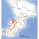 bagnara terremoto 1908_03