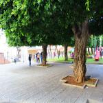 villa comunale 2016_14