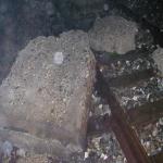 bagnara ferrovia galleria_10