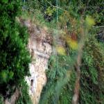 2014 bagnara saffioti_036