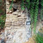 2014 bagnara saffioti_062