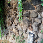 2014 bagnara saffioti_064