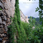 2014 bagnara saffioti_069