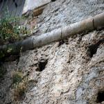 2014 bagnara saffioti_091