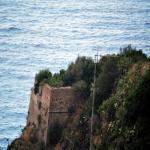 2014 bagnara saffioti_158