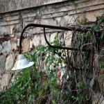 2014 bagnara saffioti_165