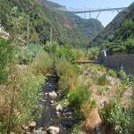 agosto 2012_053