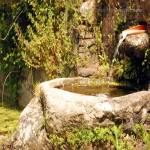 bagnar varie 2014_266