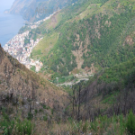 bagnara 2001_073