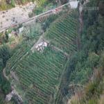 bagnara 2001_440