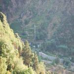 bagnara 2001_558