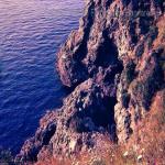 bagnara costiera 86 89 saffioti_034