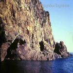 bagnara costiera 86 89 saffioti_147