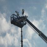 pino abbattuto 2012_31