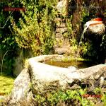 la fontana di vermeni_02