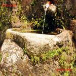 la fontana di vermeni_06