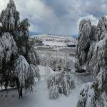 neve 9 febbraio 2015_33