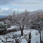 neve 9 febbraio 2015_43