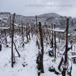 neve 9 febbraio 2015_62