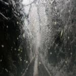 neve 9 febbraio 2015_69