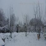neve 9 febbraio 2015_70