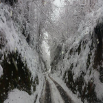 neve 9 febbraio 2015_73