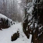 neve 9 febbraio 2015_83