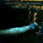 balena al porto 2016 b laurendi_2