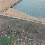 dicembre 1991 marinella_18