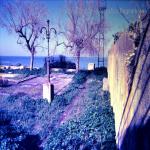 belvedere 80_01