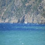 bagnara agosto 2018 gianni saffioti_68