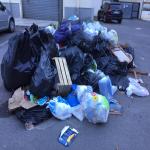 bagnara novembre 2018 mimma laurendi_13