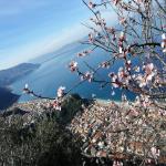 bagnara 2018 carmelo cacciola_055