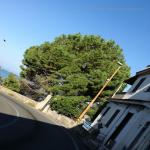bagnara 2018 carmelo cacciola_473