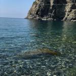 solano inferiore e bagnara centro 2018 r meliambro_27