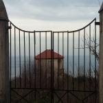 bagnara 2018 tommy fazzari_008