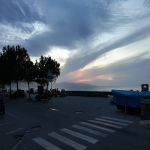 bagnara 2018 tommy fazzari_079