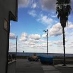 bagnara 2018 tommy fazzari_528