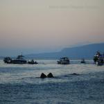 bagnara marinella 29 settembre 2019_26