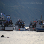 bagnara marinella 29 settembre 2019_57