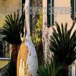 bagnara calabra 2019 rosella meliambro_05-300x100
