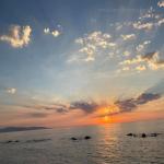 bagnara rosella meliambro luglio 2020_10